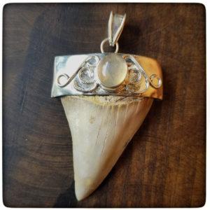 fire-opal-shark-tooth